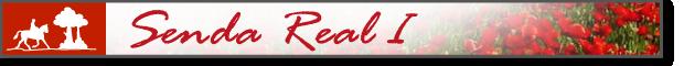 banner_Senda_Real_I