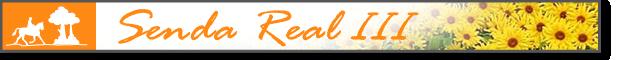 banner_Senda_Real_III