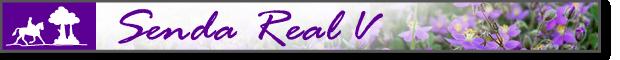 banner_Senda_Real_V