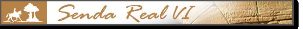 banner_Senda_Real_VI