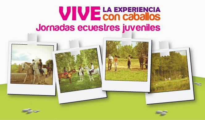 cabecera_juveniles